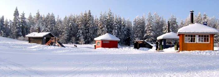 perheet_talvipuisto
